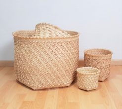 palm baskets