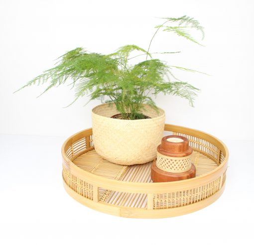 round bamboo tray with plant