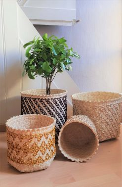 Baskets Collection